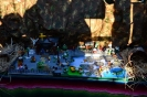 Giro dei Presepi di Canale 2015_16